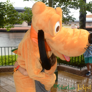 Pluto Walt Disney World Epcot