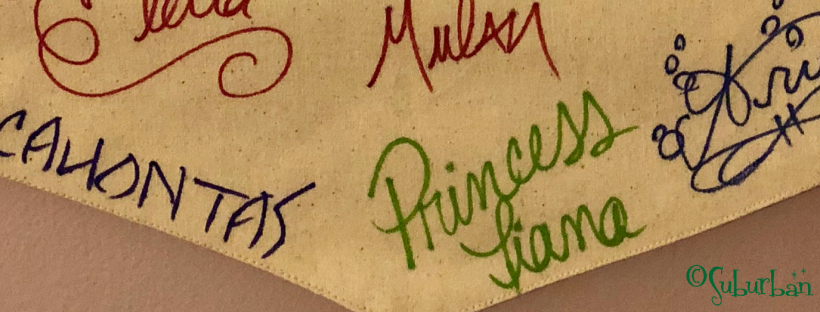 Walt Disney World Character Autographs Meet and Greet Princess Pocahontas Tiana Elena Ariel Mulan Elsa Tinker Bell