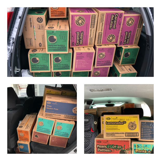 Girl Scout Cookie Boxes Packages