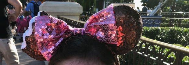 Mickey Ears Disney World