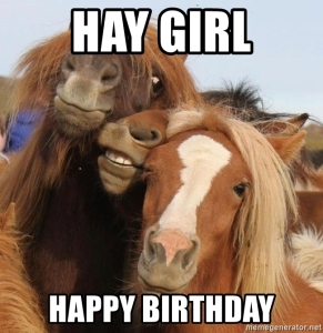 Horses Happy birthday barn girl quarter horse